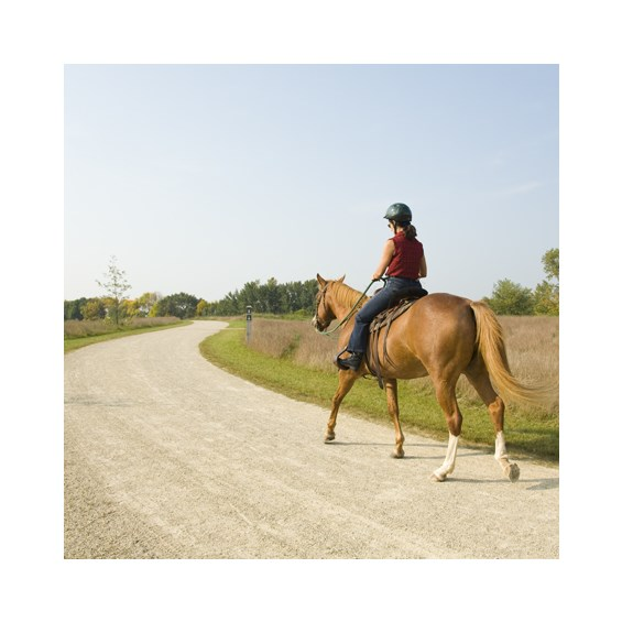 annual-horse-trail-permit
