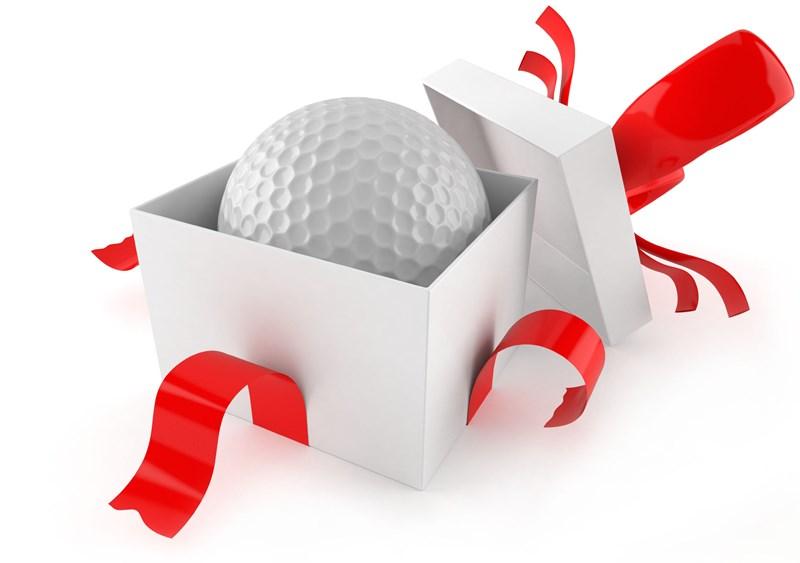 Image result for christmas golfer