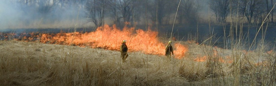 Fall is Controlled Burn Season