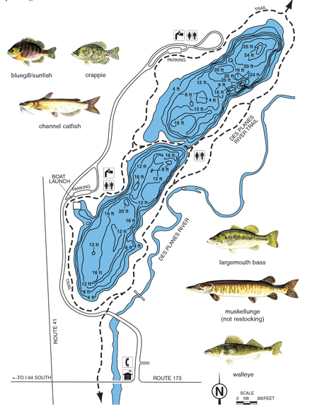 Fishing find an activity lake county forest preserves for Pond depth for fish
