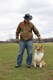 Grassy_Lake_Lakewood_Dog_Exercise_Area_4.1.16_133