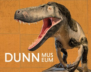 Photo of Dinosaur in the Dunn Museum