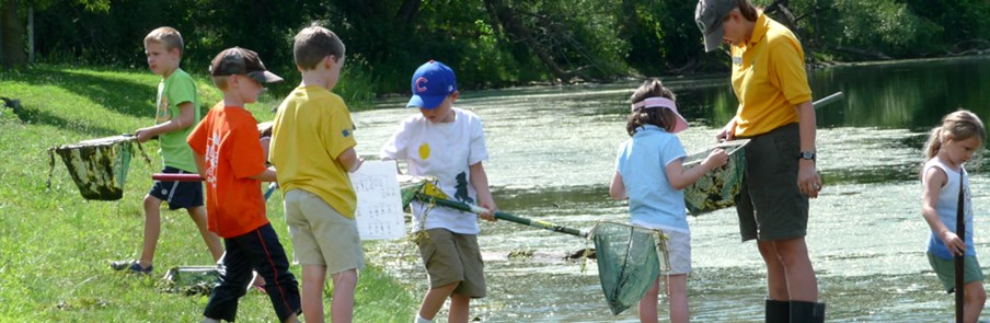 Pond Scooping at Summer Camps