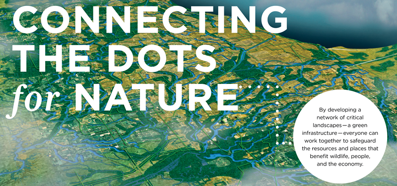 Connecting_the_Dots_for_Nature_Header