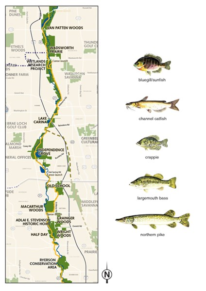 - Find an Activity | Lake County Forest Preserves Des Plaines Map on